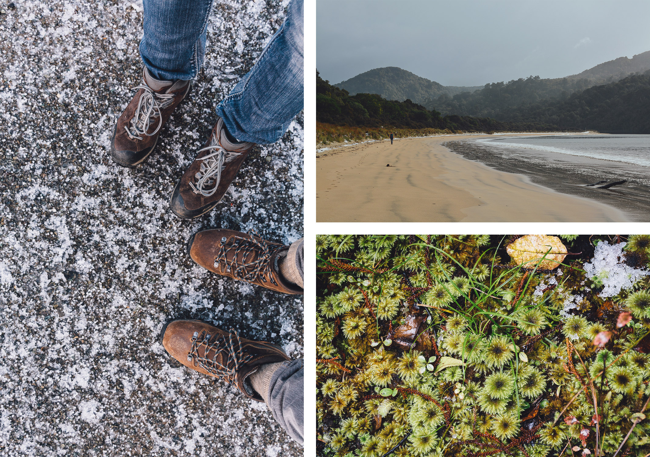 boots-beach-mosses